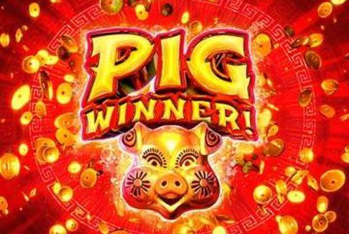 Pig Winner Slot (RTG)
