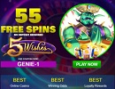 Aladdin 5 Wishes (55 Free Spins)