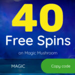 Free Spin Casino (40 Free Spins)