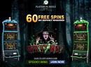 Platinum Reels Casino no deposit bonus (60 Free Spins)