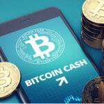Bitcoin Cash casino